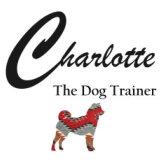 charlotte the dog trainer