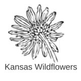 kansas wildflowers